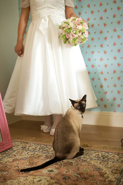 Vinatage bride with her beautiful siamese cat before her wedding at the Mustard Seed restaurant, Ballingarry, Co. Limerick.